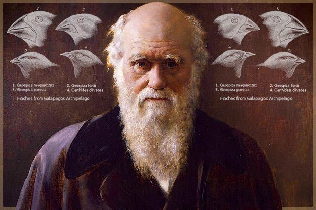 On Racism and Cancelling Charles Darwin