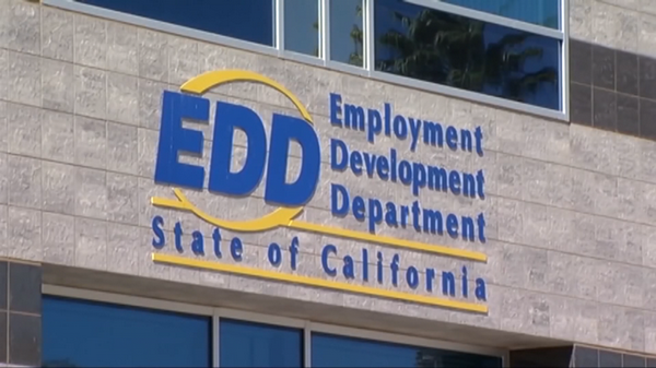 Thoughts on Working for EDD